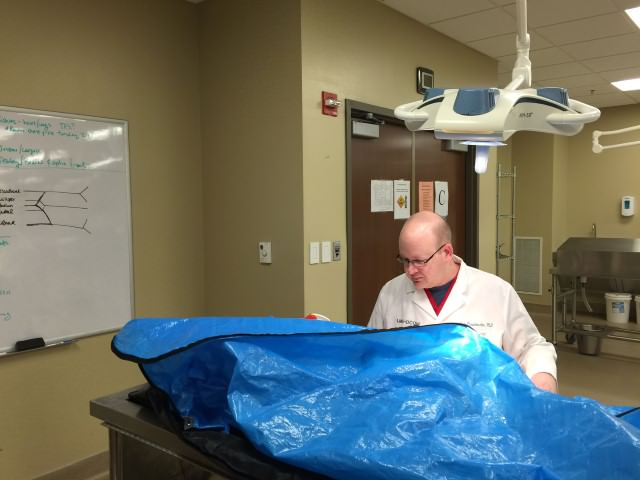 Conducting anatomical variation research in LMU-DCOM's cadaver/donor laboratory.